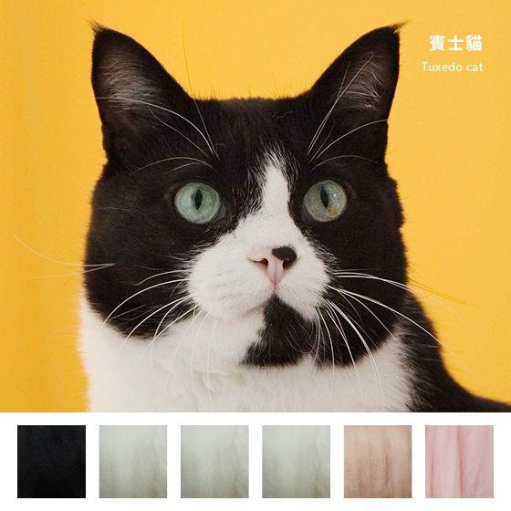 針氈 / 動物‧DIY材料包